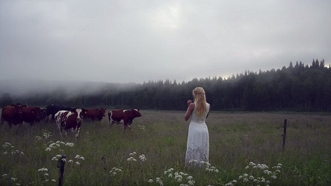 Jonna Jinton a le sue mucche