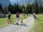 Al via la spasseggiata nel bosco in Val Saisera